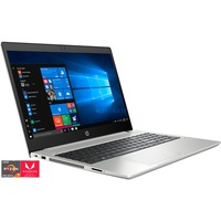 HP ProBook 455 G7 175W8EA , Notebook